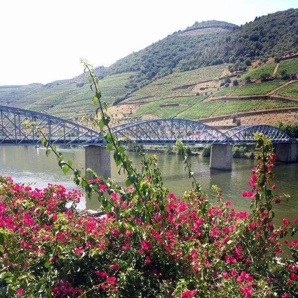 River Douro, Pinhao
